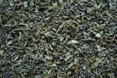 Сухой зеленый чай как предпосылка стоковое изображение rf