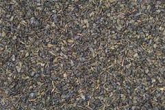сухой зеленый чай Стоковое Фото