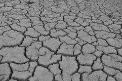 Сухой земной план Стоковая Фотография