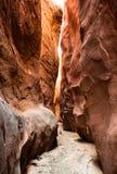Сухой каньон шлица вилки Стоковое Изображение