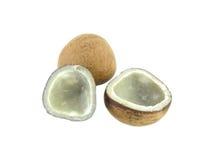 Сухой кокос Стоковая Фотография RF