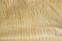 Сухой крупный план структуры листьев банана Стоковое Изображение RF