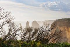 Сухой кустарник - большая дорога океана Стоковые Изображения