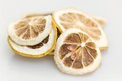сухой лимон Стоковые Изображения