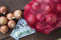 Сухой лук на деревянном поле, увеличение в сухом луке, доллар и лук, повышение цен лука, Стоковые Изображения