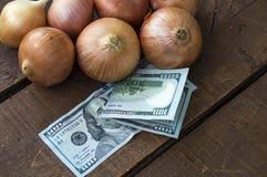Сухой лук на деревянном поле, увеличение в сухом луке, доллар и лук, повышение цен лука, Стоковое Изображение