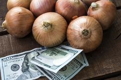 Сухой лук на деревянном поле, увеличение в сухом луке, доллар и лук, повышение цен лука, Стоковое фото RF