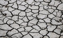 Сухой треснутый конец грязи вверх стоковое фото