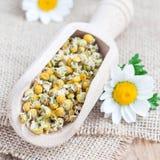 Сухой чай стоцвета в деревянном ветроуловителе, свежий стоцвет цветет на предпосылке, формате квадрата стоковые фотографии rf