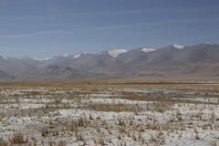 Сухой Tso Kar, озеро соли стоковая фотография