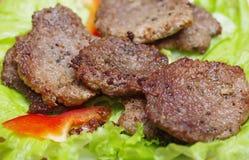 Сухопарое зажаренное в духовке мясо, Стоковое Изображение RF