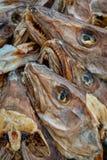 Сушить головы трески stockfish в рыбацком поселке Reine в Норвегии стоковые фото