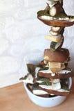 Сушить грибов на строке Стоковая Фотография RF