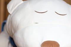 Сулой на стороне заполненного медведя Стоковые Фото