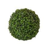Сфера от зеленых цветов изолированная на белой предпосылке Стоковые Фото