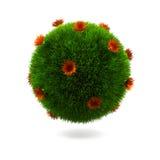 сфера травы Стоковое фото RF