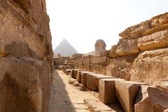 сфинкс пирамидок Египета Стоковые Изображения RF