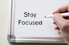 Сфокусированное пребывание написанным на whiteboard стоковые фото