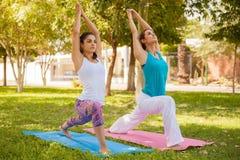 Сфокусированные девушки делая йогу Стоковая Фотография