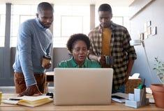 Сфокусированные молодые африканские сотрудники используя компьтер-книжку в офисе Стоковое Изображение