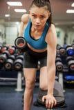 Сфокусированный вес гантели женщины поднимаясь в руке Стоковое Фото