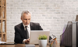 Сфокусированный предприниматель писать электронную почту Стоковые Фотографии RF