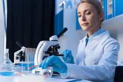 Сфокусированный ученый используя микроскоп пока работающ с реагентами в лаборатории стоковые изображения