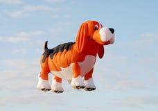 сформированная собака воздушного шара стоковые фото
