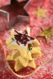 сформированное печенье шоколада брызгает звезду Стоковые Фото