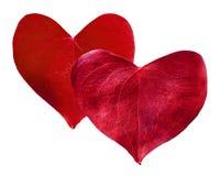 Сформированное сердце 2 красное листьев Стоковые Изображения