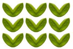 Сформированное сердце лист изолированным на белой предпосылке Стоковое Изображение