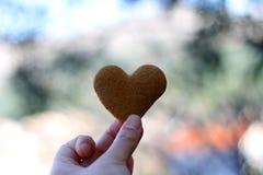 сформированное сердце печенья Стоковая Фотография RF
