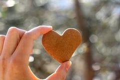 сформированное сердце печенья Стоковые Фотографии RF
