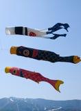 сформированные флаги вырезуба Стоковая Фотография RF