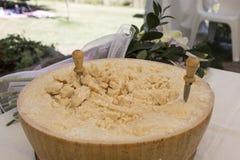 Сформируйте драгоценного итальянского сыра Стоковые Изображения