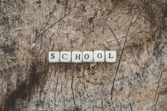 Сформулируйте школу шариков алфавита на поверхности пня дерева в лесе Стоковые Фото