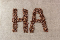 Сформулируйте «ha» кофейных зерен Стоковое Фото