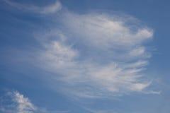 Сфотографируйте от лета Quadrooptera реки стоковые изображения