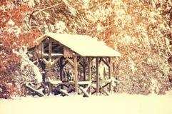 схематическая зима парка изображения Стоковые Фотографии RF