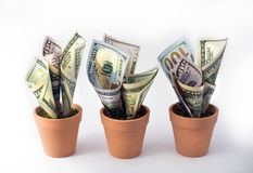 схематическим финансовохозяйственным белизна роста изолированная изображением стоковое фото