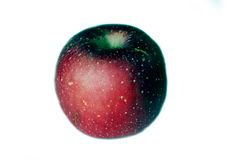 схематическое яблока плохое Стоковое фото RF