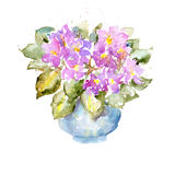 Схематичная красочная картина акварели на белой бумаге Яркие фиолетовые цветки и сочные зеленые листья также вектор иллюстрации п Стоковые Изображения RF