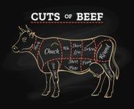 Схема доски говядины отрезка мясника коровы иллюстрация штока