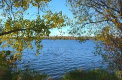 Сценарий озера кролик - северная Минесота стоковые фотографии rf