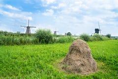 Сценарная зона Kinderdijk прудов, полей и ветрянок Стоковые Изображения