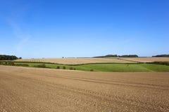 Сценарная обрабатываемая земля в осени Стоковое Изображение RF