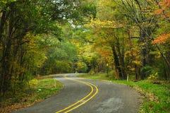 Сценарная дорога в восточном Техасе стоковая фотография rf