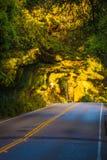 Сценарная дорога Калифорнии стоковое фото rf