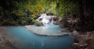 Сценарная предпосылка природы потока реки пропуская через лес стоковые изображения