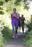 Сценарная трасса jog для 3 бегунов Стоковые Фотографии RF